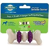 PetSafe Busy Buddy Bristle Bone Dog Toy, Extra Small