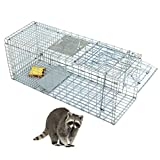 ZENY Live Animal Trap 32'' X 12.5'' X 12'' Steel Cage Catch Release Humane Rodent Cage for Rabbits, Stray Cat, Squirrel, Raccoon, Mole, Gopher, Chicken, Opossum, Skunk & Chipmunks