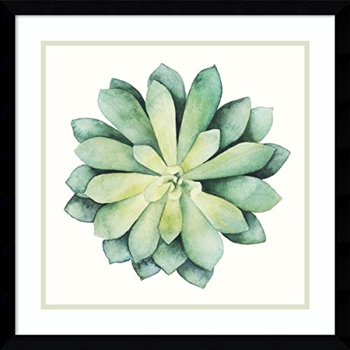Framed Art Print 'Tropical Plant VI' by Grace Popp: Outer Size 21 x 21