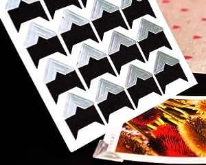 Paper Picture Frame - Silver Corner
