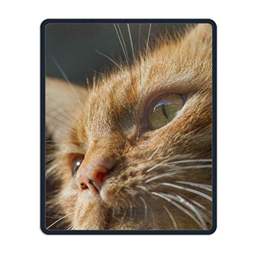 (Mouse Pad with Stitched Edges,Animal Cats Non-Slip Rubber Base Mousepad for Laptop)