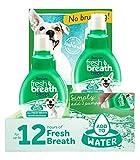 Tropiclean 6 Piece Fresh Breath Drops counter Display