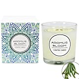 AromusBloom Natural Essential Oils Scented Candle Gift, 100% Eco-Friendly Soy Wax Aromatherapy Candle, Vanilla/Geraniums/Lemon/Jasmine/Lavender etc. 10 Scents(Vanilla)