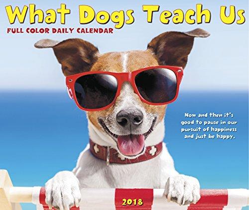 What Dogs Teach Us 2018 Box Calendar