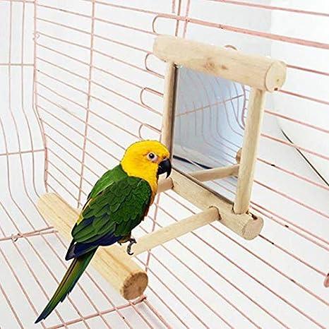 biggroup - Soporte para pájaros con Espejo para Loro, Periquito ...