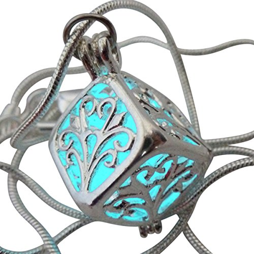 UMBRELLALABORATORY Wishing Necklace, Steampunk Jewelry Box Fairy Magical Glow in The Dark-Blue-Silver