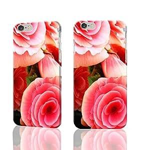 ACESR Bear Print Luxury iPhone 6plus 5.5 Cases, TPU Case for Apple iPhone 6plus 5.5 Transparent