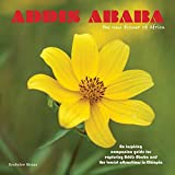 Addis Ababa, the new flower of Africa