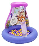 Sofia the First Disney Color N Play Activity Playland