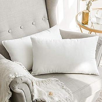 Amazon.com: Home Bright - Fundas de almohada de terciopelo a ...