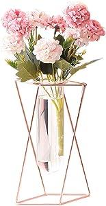 Aoderun Glass Flower Vase with Metal Stand Modern Geometry Desktop Glass Planter Indoor Hydroponics Plants for Home Office Garden Wedding Decor (Rose Gold, L)