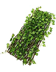Bamboo garden fence with large size industrial vegetables