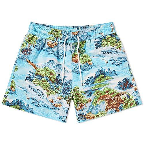 Polo Ralph Lauren Mens Printed Swim Shorts Beach Trunks with Strings (Landscape/Hawaiian, - Lauren Mens Polo Ralph Shorts