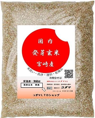 発芽玄米  725g ドライタイプ 無洗玄米