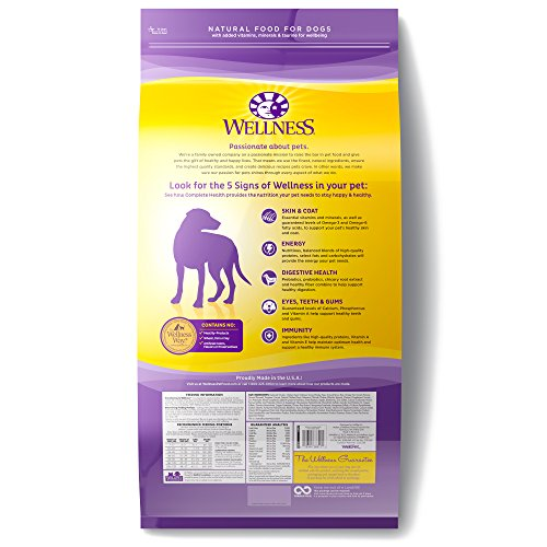 Wellness-Complete-Health-Natural-Dry-Dog-Food-Chicken-Oatmeal-30-Pound-Bag