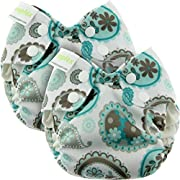 Blueberry Newborn Simplex All in One Cloth Diapers, Bundle of 2, Made in USA (Paisley)