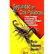 SEGURIDAD EN DOS PALABRAS (Spanish Edition)