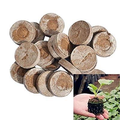 Y-YUNLONG 100pcs 30mm Peat Pellets Seeds Starting Peat Pellet Helps to Avoid Root Shock : Garden & Outdoor