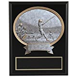 8''x10'' Black Marble Finish Baseball Plaque with Resin Action Mount FREE CUSTOM ENGRAVING