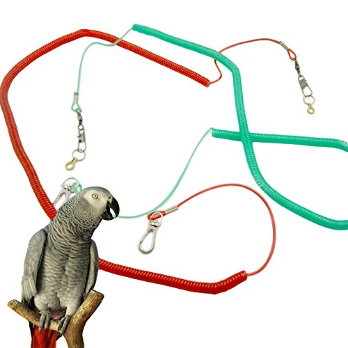 Wildgirl Pet Puppy Bird Flying Training Rope Leash Lead Harness (XXL)