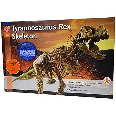 Edu-Toys T-Rex Skeleton 36