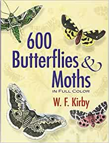 600 Butterflies And Moths In Full Color Dover Pictorial Archive