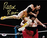 Razor Ramon Signed WWE 8x10 Photo COA Scott Hall Picture Autograph WCW 3 - PSA/DNA Certified - Autographed Wrestling Photos