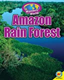 img - for Amazon Rain Forest with Code (Wonders of the World) book / textbook / text book