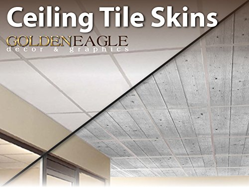 2x4 Glue Up Ceiling Tile Skin - Wide White Washed Knotty ...