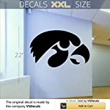 NCAA Wall Mural Vinyl Sticker Sports Logo Emblem Iowa Hawkeyes DA2888