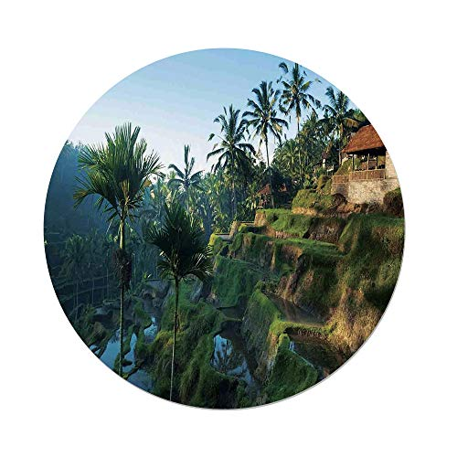 Polyester Round Tablecloth,Balinese Decor,Terrace Rice Fields Palm Trees Traditional Farmhouse Morning Sunrise View Bali Indonesia,Green,Dining Room Kitchen Picnic Table Cloth Cover,for Outdoor Indoo