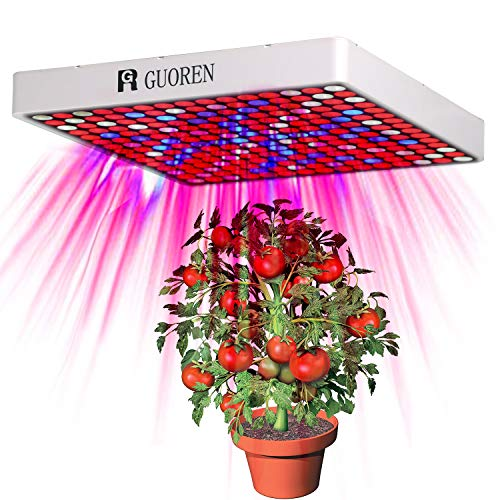 Shenzhen Led Grow Light Factory in US - 7