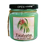 6 hr air freshener - Eucalyputs,jar Scented Candle-relax Air Freshener-eucalyptus Scent 6 Oz.-burn 30 Hr. …