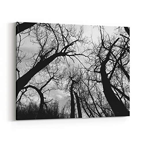 Rosenberry Rooms Canvas Wall Art Prints - Spooky Trees in Glenbow Ranch Provincial Park (24 x 16 inches)]()