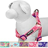 Blueberry Pet 5 Colors Soft & Comfy Step-in Paisley Flower Print Dog ...