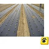 Biotelo per pacciamatura 1mt x 100mt 15 micron biodegradabile
