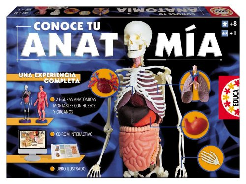 Educa Borrás 14680 - Conoce tu anatomía: Amazon.es: Juguetes y juegos