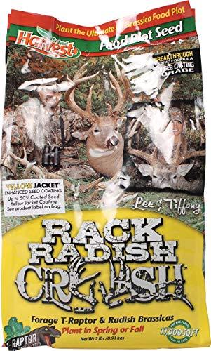 (Evolved Harvest Hunting Supplies 73033 Rack Radish Crush Food Plot Seed, 1/4-Acre)