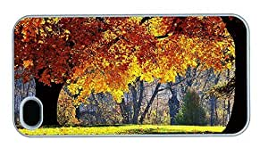 Hipster for cheap iPhone 4 cover Autumn Forest Trees PC White for Apple iPhone 4/4S