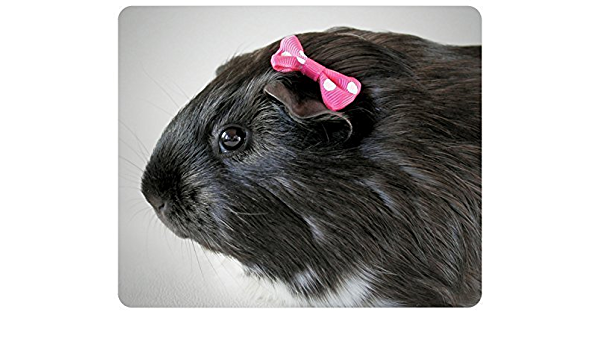 Guinea Pig Mouse Pad Floral