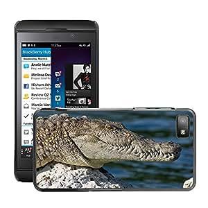 Super Stella Slim PC Hard Case Cover Skin Armor Shell Protection // M00144459 Crocodile Wild Animal Amphibian Shy // BlackBerry Z10