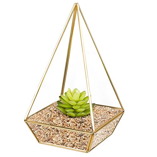 HOMEIDEAS Modern Terrarium Clear Glass Pyramid Tabletop Geometric Polyhedron Box,Decorative Succulent Plants Holder(Golden)