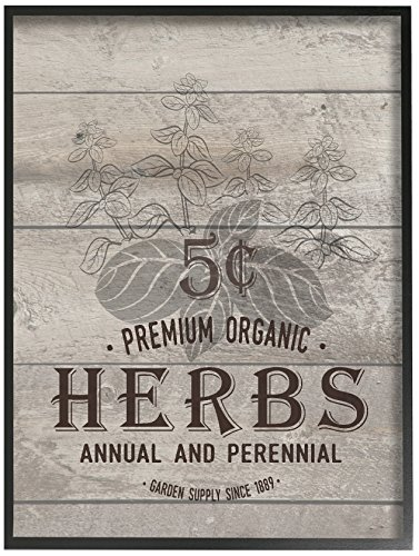 Stupell premium herbs vintage sign wall plaque art