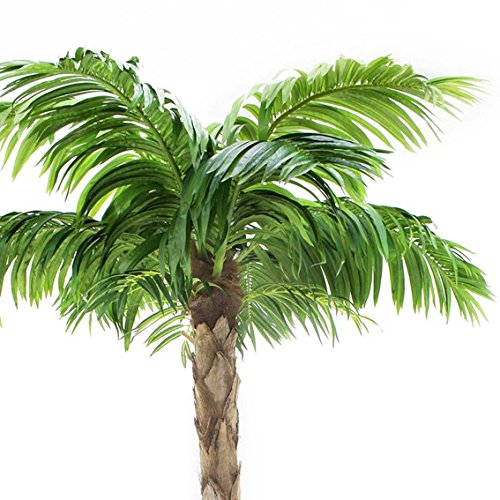 Quality Artificial Peruvian Palm Tree 8ft Tall, Replica Indoor / Outdoor - 240cm Tall by Vogue Plants