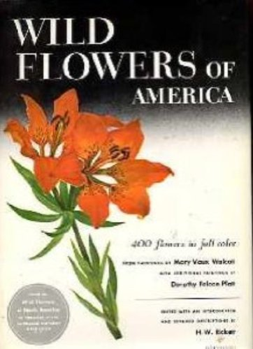 Wild Flowers Of America, H.W. Rickett
