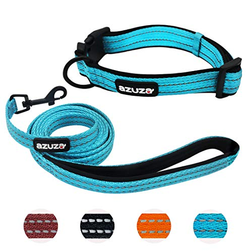 azuza Durable Padded Dog Leash and Collar Set, Reflective Strip Extra Safe and Comfy for Medium Dogs,Blue