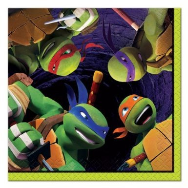 April Oneil Ninja Turtle Costume (16 Count Teenage Mutant Ninja Turtles Beverage Napkins, Multicolored)