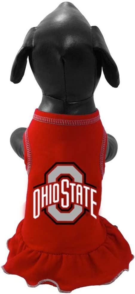 XX-Small NCAA Collegiate Cheerleader Dog Dress