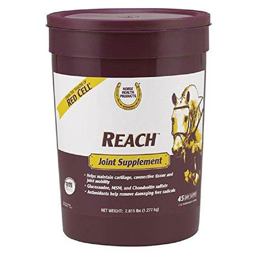 (Reach Farnam Horse Joint Supplement - Tasty alfalfa-flavored pellets - 45 Days)