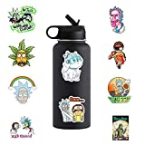Acekar Rick and Morty Stickers for Hydro